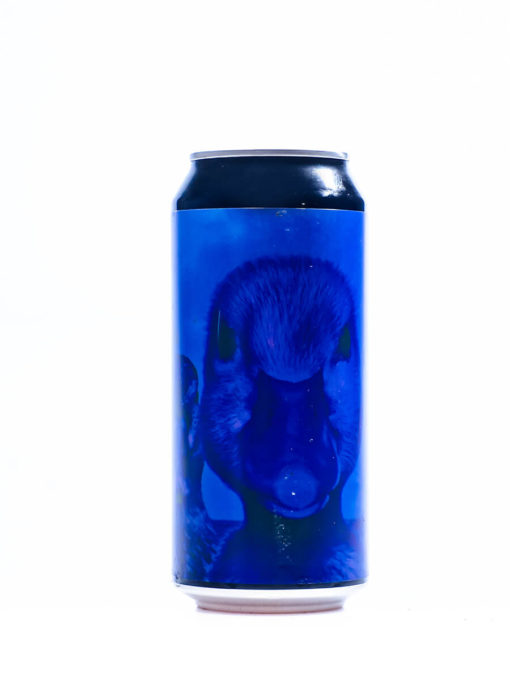 Duckpond Brewing Black and Blue